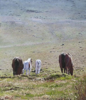 Early-Grazing,-Links-Tor